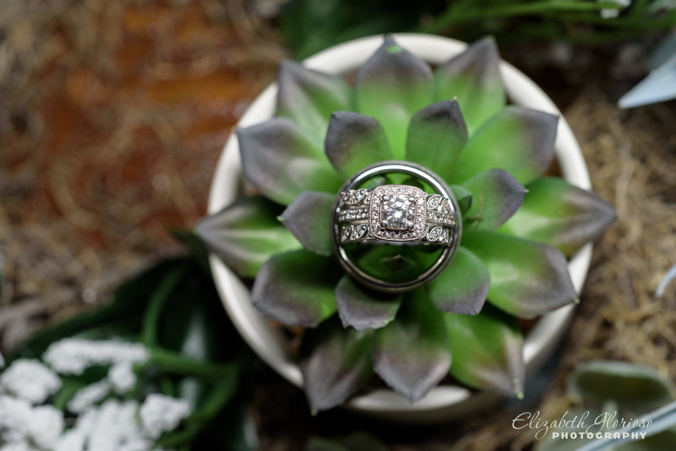 Wedding rings with succulent plant